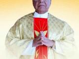 Fr.MathiasPereira5